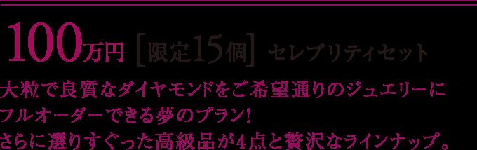 100万円 [限定15個] セレブリティセット