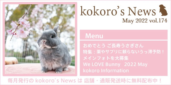 今月のkokoro'sNews