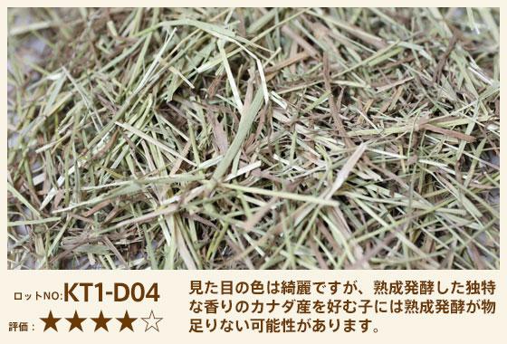 カナチモ1番刈り KT1-D04