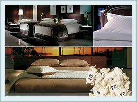 様々なシチュエーションで使用されるドリームベッド