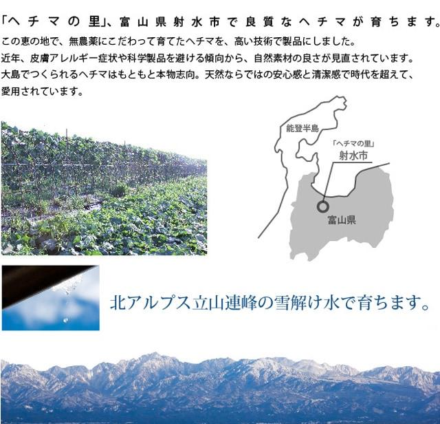 ヘチマの里、富山県射水市で良質なヘチマが育ちます。