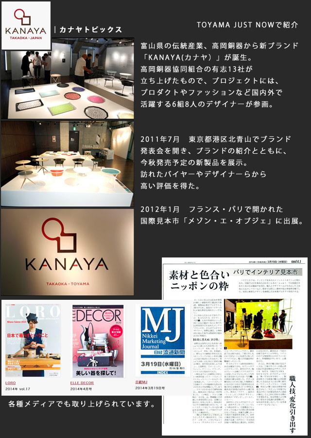 kanayacho_topics