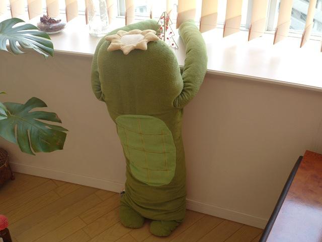 かぱ 濃緑 LLサイズ抱き枕