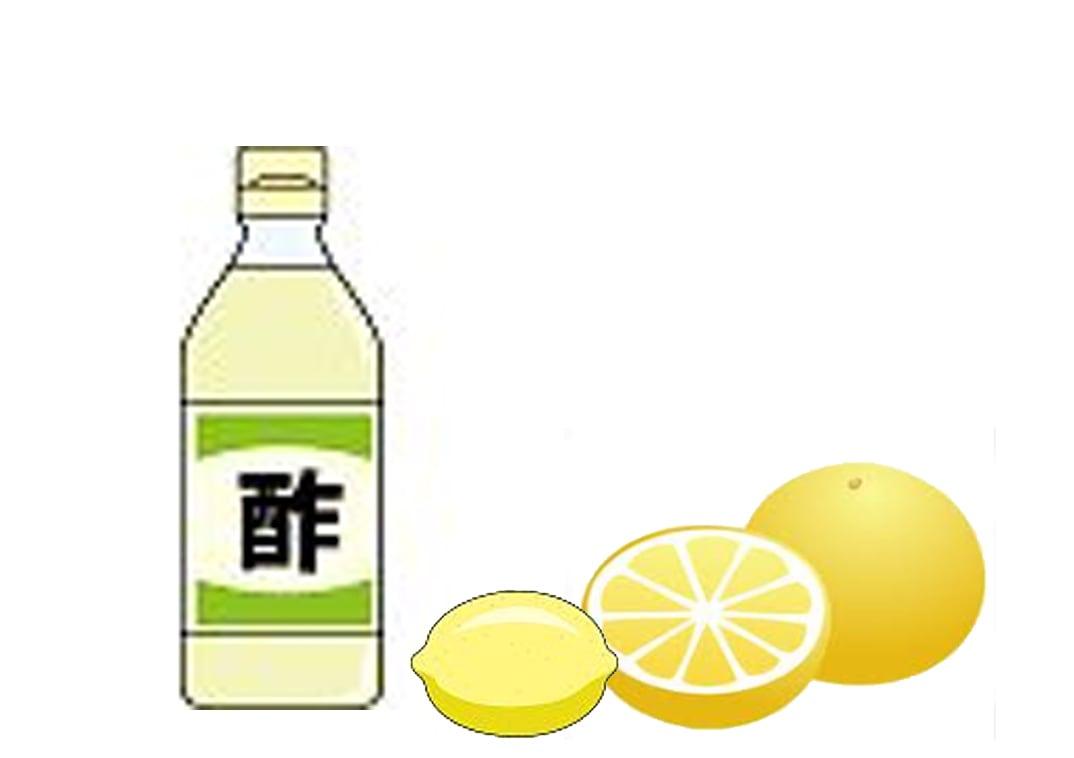 酢・グレープフルーツ・かんきつ類