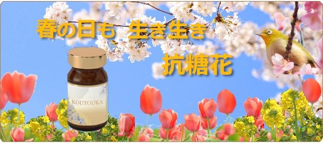 自然の恵み抗糖花サプリメントでいきいき 抗糖化で美しく