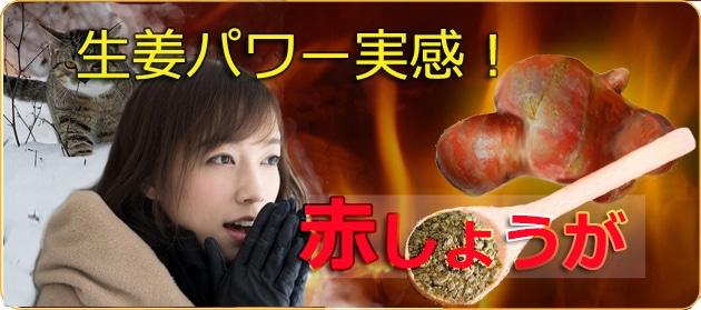 赤生姜でほかほか