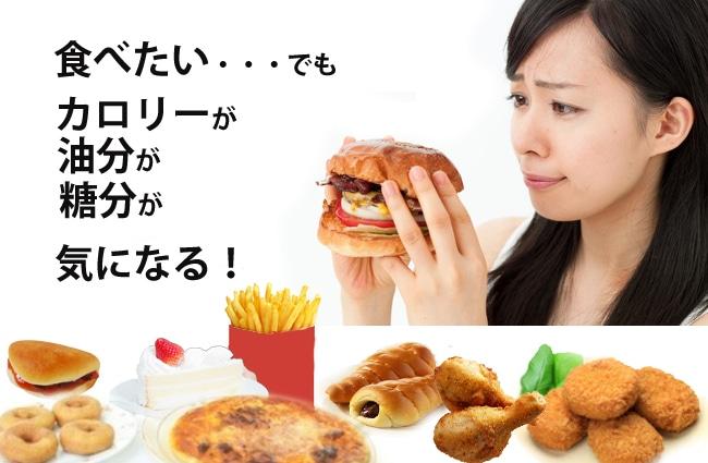 食べたい、でも気になるカロリー。油分、糖分