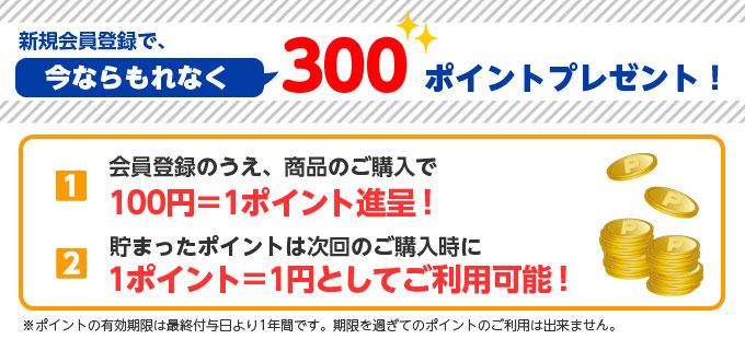 新規入会ポイント300ポイント!