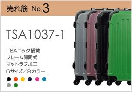 TSA1037-1