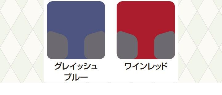 カラーの見本