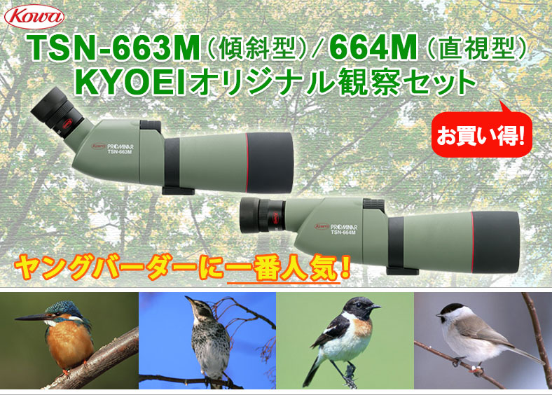 Kowa TSN-663M、664M kyoeiオリジナル観察セット