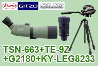 TSN-663+TE-9Z+G2180+823PROセット