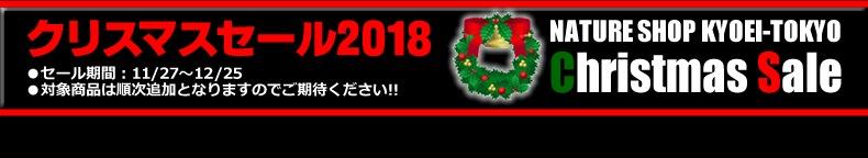 2018クリスマスセール・フッター