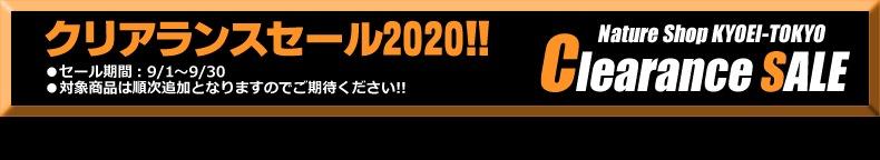 2020サマーセールフッター