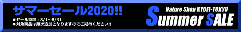 2020サマーセールサブタイトル01