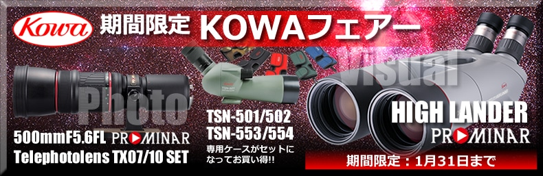 期間限定KOWA製品が超特価