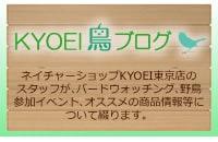 ネイチャーショップKYOEI 東京店 鳥ブログ