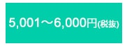 5,001〜6,000円(税抜)