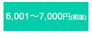 6,001〜7,000円(税抜)