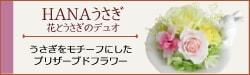 HANAうさぎ - 花とうさぎのデュオ