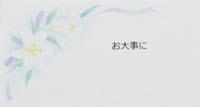 フリーメッセージ(地味)【フラワーマルシェ ラコリーヌ】