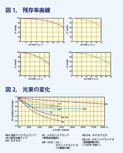 残存率と光束の変化