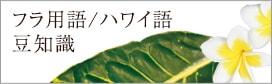 フラ用語/ハワイ語 豆知識