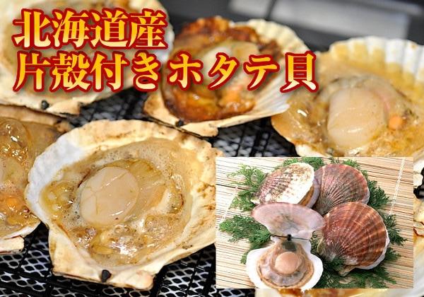 北海道産殻付き帆立貝
