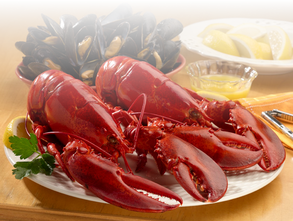 seafood king ロブスター