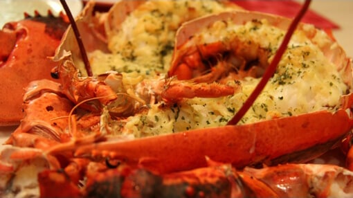 http://gigaplus.makeshop.jp/lobster/img/recipe/lobster-easy-gratin.jpg
