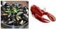 【送料無料】ロブスターとムール貝の贅沢セット