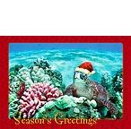 ハワイアンクリスマスカードholiday honu