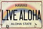 ハワイアンアンティークマグネット