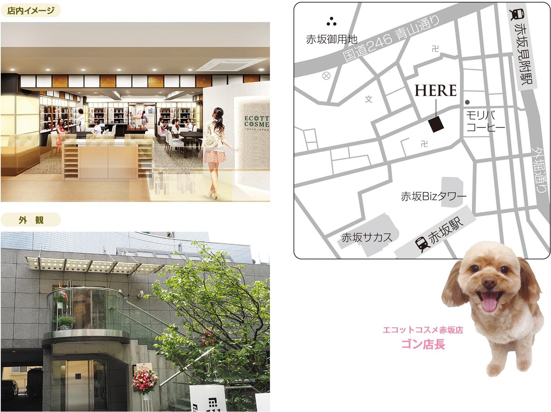 赤坂店マップ