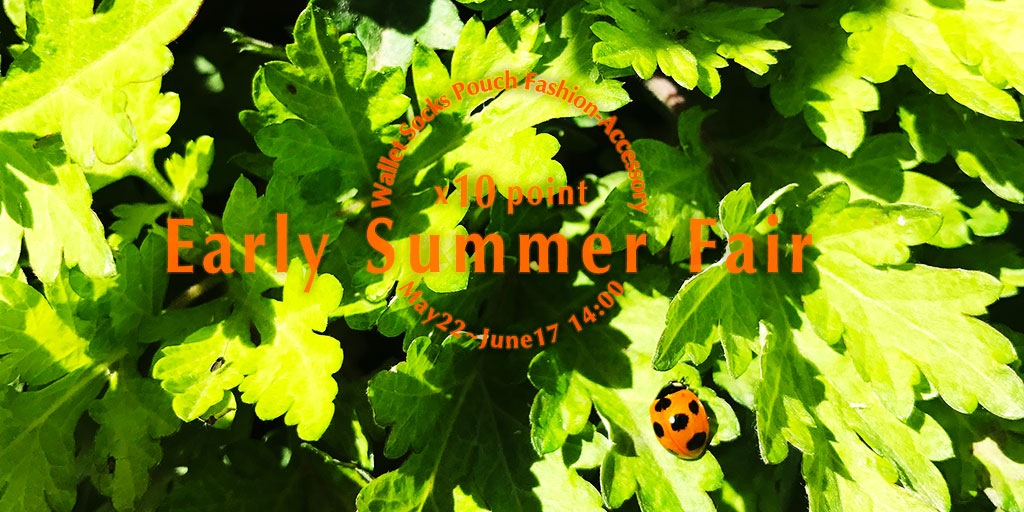 2019 Early Summer Fair|ウォレット・ソックス・ファッション雑貨がポイント10倍