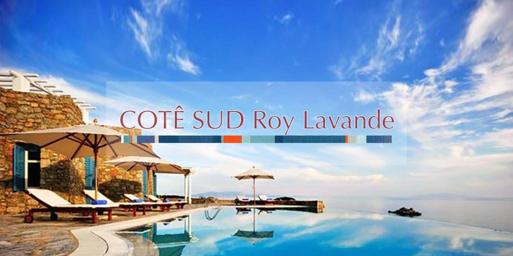 2019Printemps コテ シュッド ロワ ラヴァンド/CÔTÉ SUD Roy Lavande