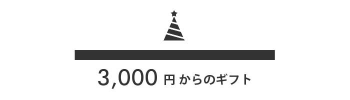 3,000円からのギフト