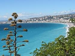 地中海沿岸地方