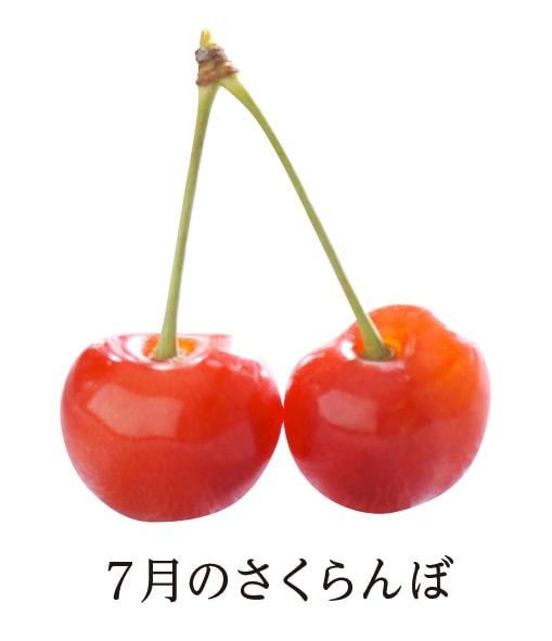 7月のさくらんぼ