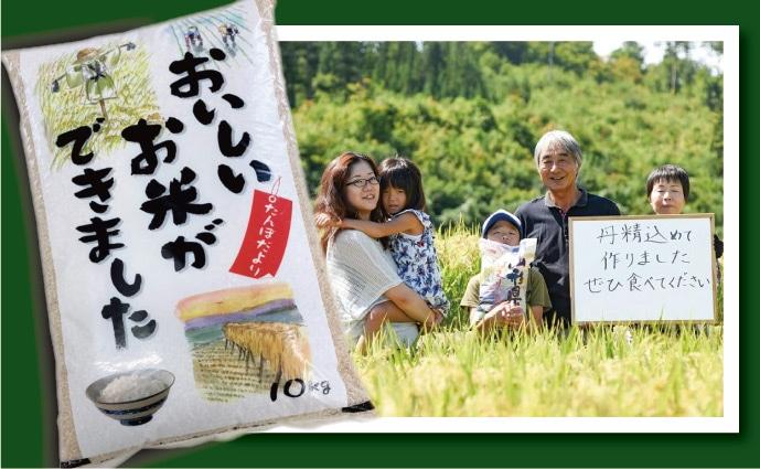 山形産はえぬき玄米10kg