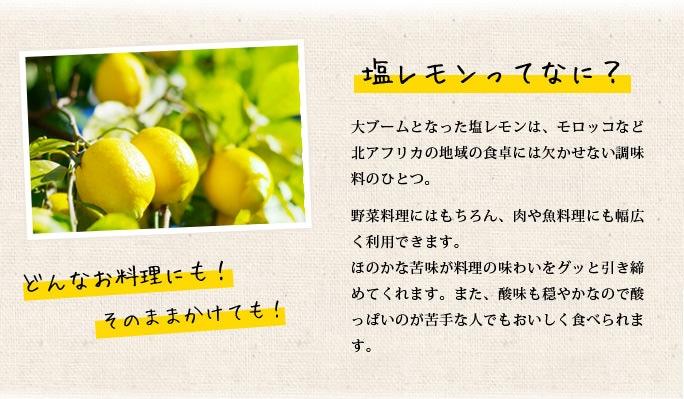 塩レモンとは