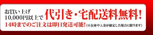 お買い上げ3000円以上でメール便税国配送無料、お買い上げ1万円以上で代引き・宅配送料無料!15時までのご注文は即日発送