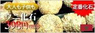【USAツーソンミネラルショー商品】限定入荷!★古代の神秘!しっかりトゲトゲ★人気の古代生物化石!★モロッコ産★天然化石/棘皮動物ウニ化石(Echinoids)/1個【メール便不可】【天然石/パワーストーン】