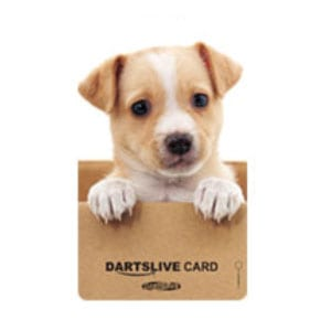 【dartslive】ダーツライブカード 41-11
