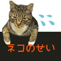 ネコのせいセール