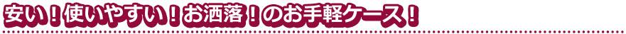 【CAMEO】ダーツケースDIMENSION WORK カメオ ディメンションワーク