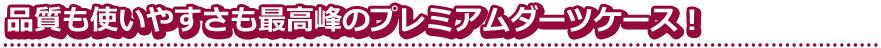 【Joker】Third collaboration case TYPE4 ジョーカードライバー×サード コラボ本革ダーツケース
