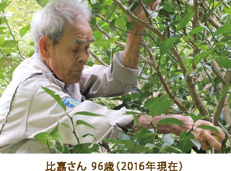 比嘉さん 96歳(2016年現在)