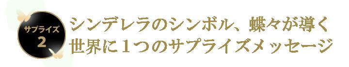 シンデレラのシンボル、蝶々が導く世界に1つのサプライズメッセージ