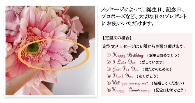 メッセージによって、誕生日、記念日、 プロポーズなど、大切な日のプレゼント にお使いいただけます。